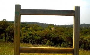 Cadre paysage Bois des Espeisses