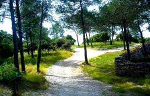Cheminement Bois des Espeisses